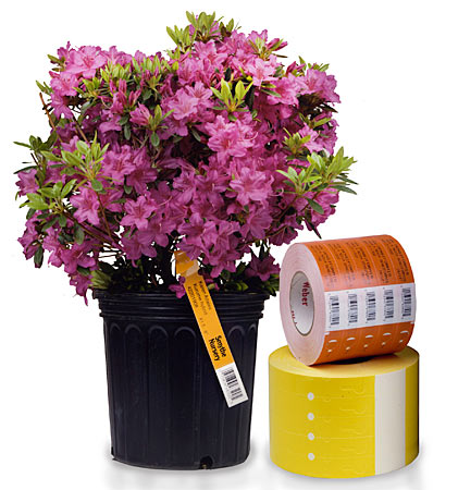 Horticultural Labels And Nursery