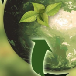 Sustainable packaging materials: Biobased plastic