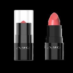 Lipstick - LS8812