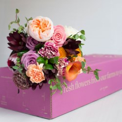 Smurfit Kappas eCommerce expertise leads to impressive sales growth for flower provider