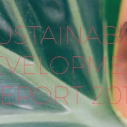 Albéa unveils its first Sustainable Development Report