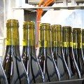 Mezzacorona winery commissions ACMI