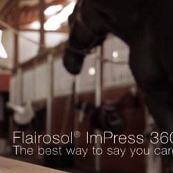 Flairosol ImPress 360 for Equine - The Best Spray for Horses