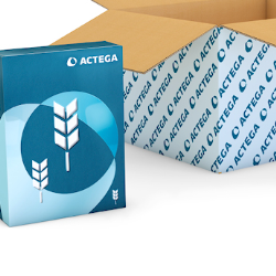 Focus on: Paper-based packaging