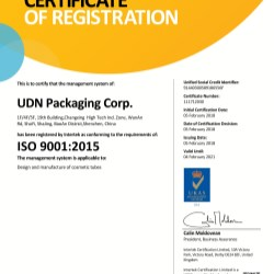 UDN has been awarded ISO 9001:2015