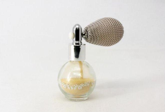 Powder sprayer FT-AC0105