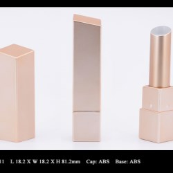 Lipstick Case FT-LS0911