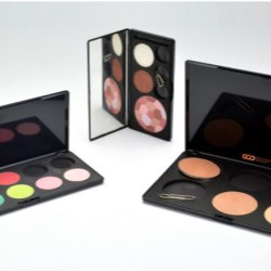 Cosmetic Compact with Replaceable Shades