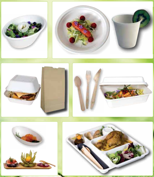 Vision verte - eco-friendly dinnerware and packaging products catalog (2016)  sc 1 st  Webpackaging & Vision verte - eco-friendly dinnerware and packaging products ...