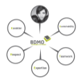 BDMO value: Expertise