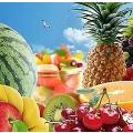 2018水果博览会触发行业新契机,生鲜市场发展势如破竹