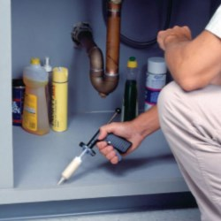 Pest control dispensing solutions