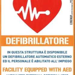 Plastopiave Defibrillator