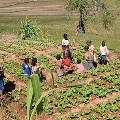 New projects for rural and socio-cultural development in Madagascar